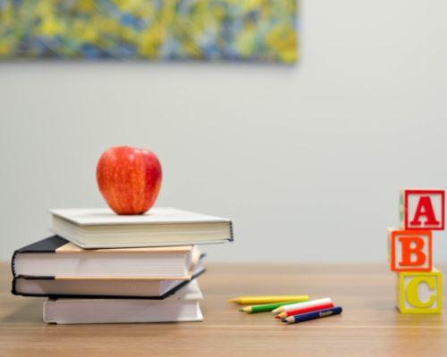 🍀大樹育兒🍀 什麼時候上學?怎麼選學校?