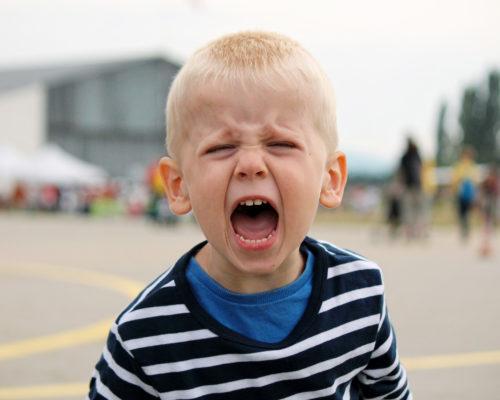 🍀大樹育兒🍀 生氣是怎麼一回事?