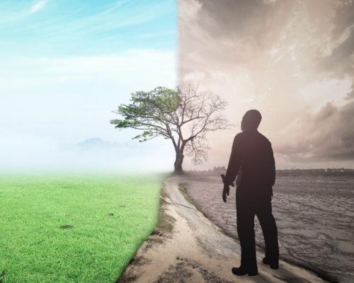 人生勝利組的失敗人生 要如何挽救岔路的人生?